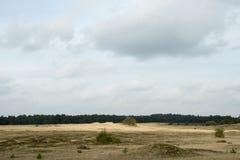 Den holländska öknen Kootwijker Zand Arkivbilder