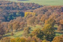 Den Holloko slotten i Ungern och hösten parkerar omkring Arkivbilder