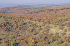 Den Holloko slotten i Ungern och hösten parkerar omkring Fotografering för Bildbyråer