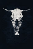 Den hota vita tjurskallen på en abstrakt bakgrund Royaltyfri Fotografi