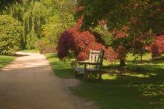 den härliga bänken arbeta i trädgården den sunlit parken Arkivbild