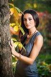 Den härliga kvinnan i grå färger som poserar i höstligt, parkerar Ung brunettkvinna som spenderar tid i höst nära ett träd i skog Royaltyfri Bild