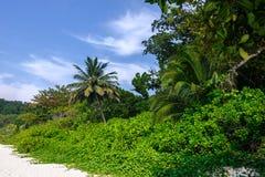 Den härliga stranden med gömma i handflatan och vit sand, Similan öar Royaltyfri Bild