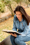 Den härliga unga kvinnan som läser en bok parkerar in, på nedgången Royaltyfria Bilder