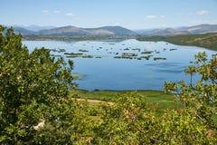 Den Hutovo Blato naturen parkerar, Bosnien och Hercegovina Royaltyfri Bild
