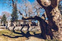 Den huvudsakliga fyrkanten i den Mestovo lite byn i berg av Greec Royaltyfri Fotografi