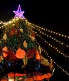 Den huvudsakliga julgranen i den Kaunas staden Litauen royaltyfri bild