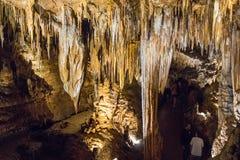 Den hypnotisera naturliga under av Luray Caverns arkivbild