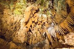 Den hypnotisera naturliga under av Luray Caverns royaltyfria bilder