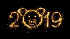 Den idérika brusanden numrerar 2019 med huvudet av svinet arkivbild