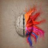 Den idérika hjärnan Arkivbild