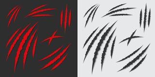 Den idérika illustrationen av jordluckrare tafsar skrapor på bakgrund Isolerat på vitbakgrund Djurt skrapa för fasa av katten, ti stock illustrationer