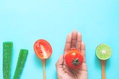 Den idérika lägenheten lägger av naturligt skönhetbegrepp, aloe vera, limefrukt och tomaten på kvinnans hand, hälsa och skincare fotografering för bildbyråer