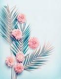 Den idérika orienteringen med tropiska palmblad och pastellfärgade rosa färger blommar på skrivbords- bakgrund för turkosblått, d royaltyfri bild