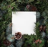 Den idérika orienteringen som göras av julgranfilialer med anmärkningen för det pappers- kortet, sörjer kottar Tema för Xmas och  royaltyfri fotografi