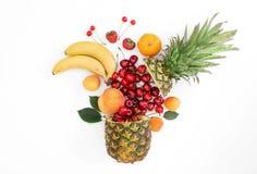 Den idérika orienteringen som göras av sommar, bär frukt på en vit bakgrund Royaltyfria Foton
