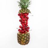 Den idérika orienteringen som göras av sommar, bär frukt på en vit bakgrund Fotografering för Bildbyråer