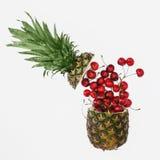 Den idérika orienteringen som göras av sommar, bär frukt på vit bakgrund Royaltyfri Foto