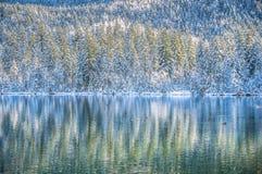 Den idylliska vinterunderland med bergsjön och snö täckte träd arkivbilder