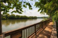 Den Ijam naturen parkerar strandpromenaden längs Tennessee River Royaltyfri Fotografi