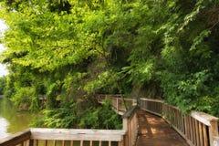 Den Ijam naturen parkerar strandpromenaden längs Tennessee River Royaltyfria Bilder