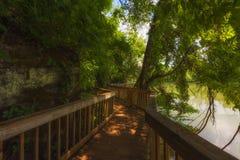 Den Ijam naturen parkerar strandpromenaden längs Tennessee River Royaltyfri Foto