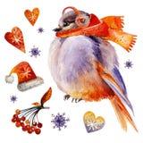 Den iklädda fågeln en halsduk och skalmer i vinter stock illustrationer