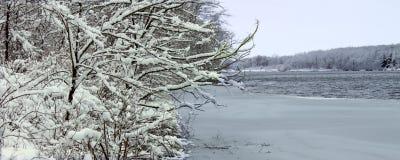 den illinois laken tränger igenom snowfall Arkivbild