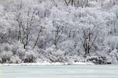 den illinois laken tränger igenom snowfall Royaltyfri Fotografi