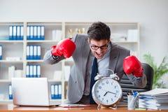 Den ilskna affärsmannen med boxninghandskar i begrepp för tidledning arkivbild