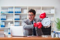 Den ilskna affärsmannen med boxninghandskar i begrepp för tidledning royaltyfri fotografi