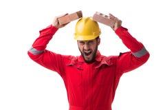Den ilskna byggmästaren som bryter tegelstenar som isoleras på vit fotografering för bildbyråer