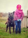 Den ilskna hunden stirrar på barnet royaltyfria bilder