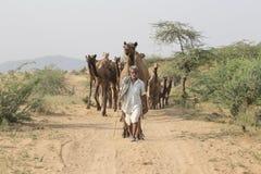 Den indiska nomaden deltog i den årliga Pushkar kamlet Mela Royaltyfri Fotografi