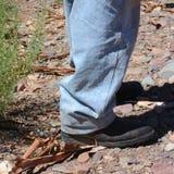 Den infödda foten i Iga Warta vaggar Royaltyfri Fotografi