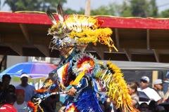 Den infödda powen överraskar South Dakota Royaltyfria Foton