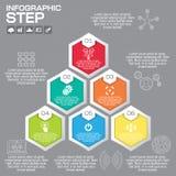 Den Infographic designmallen kan användas för workfloworienteringen, diameter Royaltyfri Fotografi
