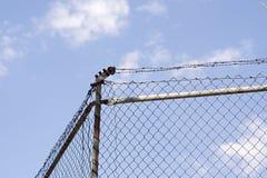 den ingen lägerstaketkeepen fängslar ut att inkräkta för säkerhet Royaltyfria Foton