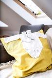 Den inomhus bilden med behandla som ett barn kläder Fotografering för Bildbyråer