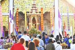 Den Inthakin pelarfestivalen Sai Khan Dok, tradition av blomman som erbjuder till pelaren, ?r en festival rymde varje ?r i Chiang royaltyfria bilder