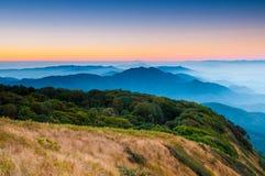 Den Inthanon bergskogen Thailand arkivbilder