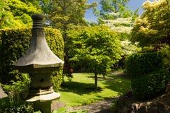 Den irländska medborgaren dubbar japan Gardens.Ireland Arkivbild