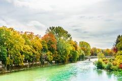 Den Isar floden färgrika träd i höst landskap i Munich Royaltyfri Bild