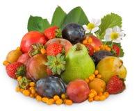 den isolerade bilden av många bär frukt closeupen arkivfoto