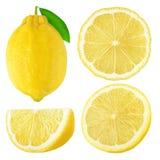 Den isolerade citronen bär frukt samlingen Arkivbild