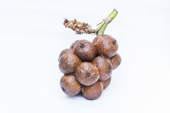 Den isolerade gruppen av salak, tropiskt område bär frukt Royaltyfria Foton