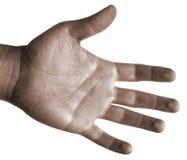 den isolerade handen gömma i handflatan upp Royaltyfria Foton