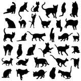 den isolerade kattsamlingen silhouettes vektorn Arkivfoto