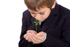 den isolerade pojken gömma i handflatan växt s Arkivbilder