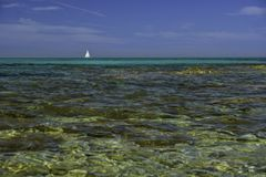 Den Isuledda stranden, candida seglar, San Teodoro, Sardinia, Italien Royaltyfri Foto